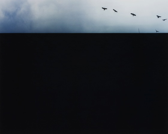 """clearsky"" 2006, C print mounted on Alpolic, H10xW12in (image size), ed.10."