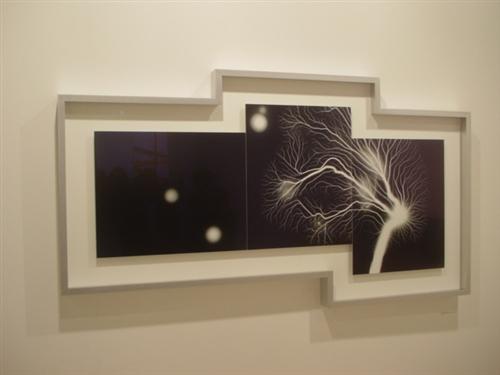 Hiroshi Sugimoto at Gallery Koyanagi