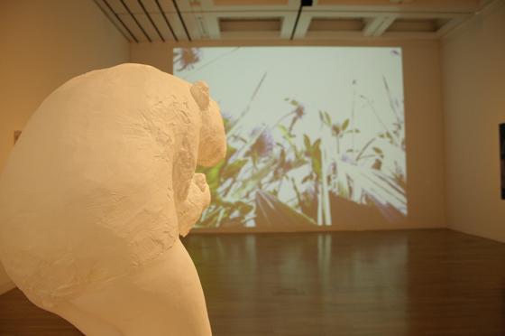 exhibition view of Sako Kojima's work