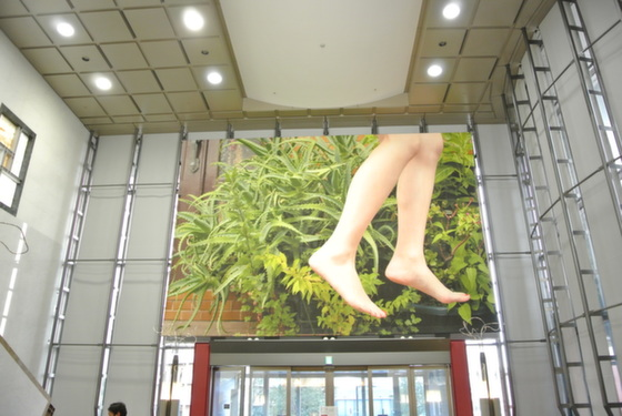 """Exhibition view of """"Today's Levitation 05/13/2011, 2012"""" by Natsumi Hayashi"""