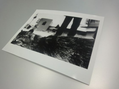 "New Arrival: Daido Moriyama ""Northern"" Series"