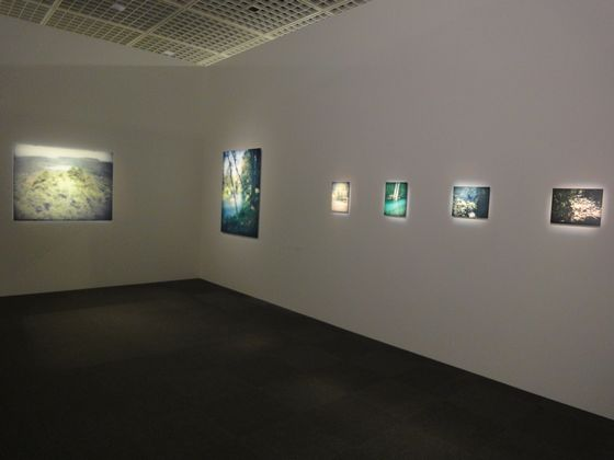 "Exhibition view Yoichi Sano's works in ""elan photographic"" at Tokyo Metropolitan Museum of Photography"