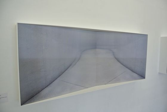 "Kyoko Nagashima ""THERE"". The image fluctuates when you see from different angles because of the lenticular lens."