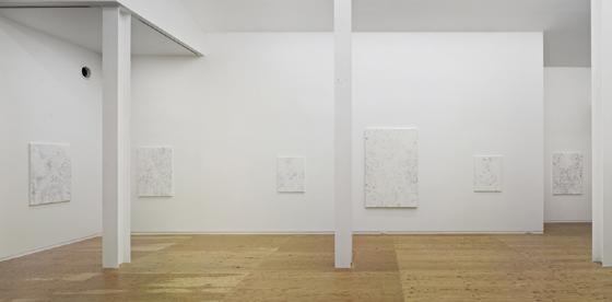 Installation View, 2012, Nobuya Hoki at Taka Ishii Gallery Kyoto, Photo: Yasushi Ichikawa, Courtesy of Taka Ishii Gallery