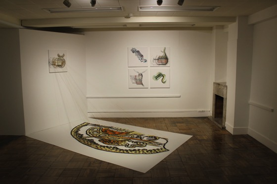 "Sayaka Miyata, Installation view ""WARP×Knots -Homage to Ernst Haeckel -"", ""WARP? -Homage to Ernst Haeckel -"" (2013)"