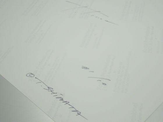 shibata_forgrey_signature